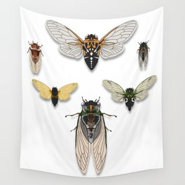 A Collection of North American Cicadas Wall Tapestry