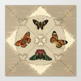 Butterfly Code Canvas Print