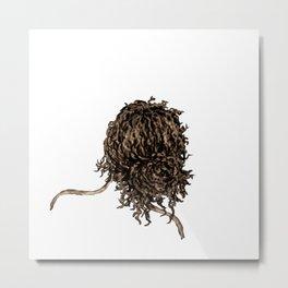 Messy dry curly hair 5 Metal Print