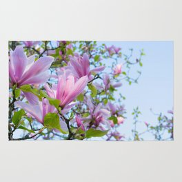 Magnolia trees in bloom  Rug