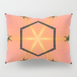 orange is for excellence Pillow Sham