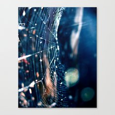 Captured Canvas Print