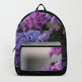 Big Hortensia flowers in front of a window Backpack