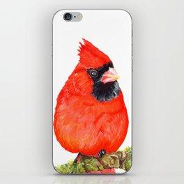 Mr Cardinal iPhone Skin