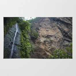Thin Waterfall Cascading in the Rainforest of the Chocoyero-El Brujo Nature Reserve in Nicaragua Rug
