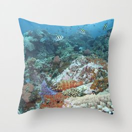 Reef with a redbanded grouper and a school of sergeant fish Throw Pillow