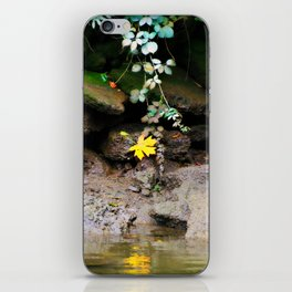 Low Tide One The Riverbank iPhone Skin