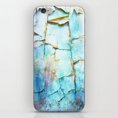 Beauty In Decay iPhone & iPod Skin