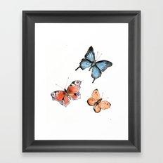 Watercolor Butterflies Framed Art Print