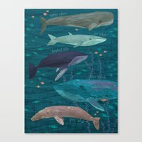 whales Canvas Prints featuring Whales by Stephanie Fizer Coleman