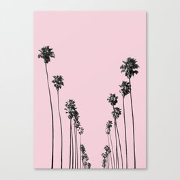 Palm trees 13 Canvas Print