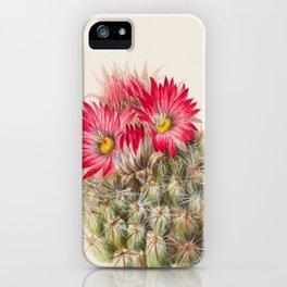 Hedgehog Cactus Botanical Print, Mary Vaux Walcott iPhone Case