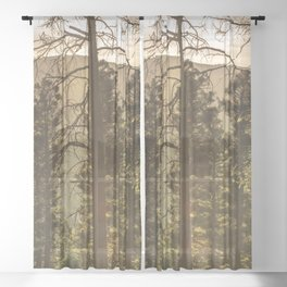 Mountain Forest New Mexico - Nature Photography Sheer Curtain