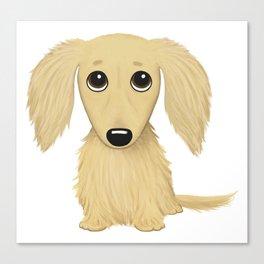 Longhaired Cream Dachshund Canvas Print