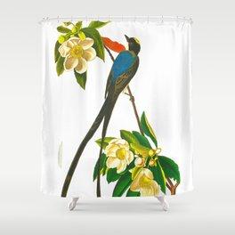 Fork-tailed flycatcher Bird Shower Curtain