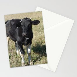 A bull grazing on a field in the grass Stationery Cards