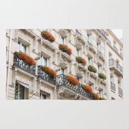 The 7th Arrondissement Rug