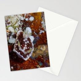 Mantle-raising Chromodoris (Goniobranchus geometricus) Stationery Cards