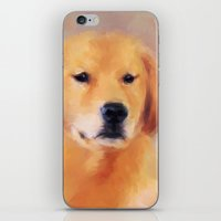 golden retriever iPhone & iPod Skins featuring Golden Retriever by Jai Johnson