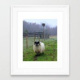Ram #2 Framed Art Print