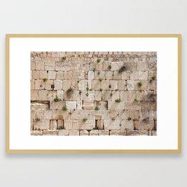 Vegetation on the Wailing Wall (Kotel) - Kotel art - Wall Fine Framed Art Print