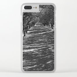 Black & White Almond Orchard Pencil Drawing Photo Clear iPhone Case