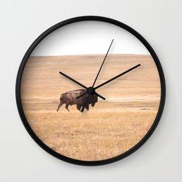 Buffalo Roaming (doing it's thing) Wall Clock