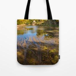 Lake patterns,Larz Aderson park Tote Bag