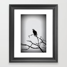 Preying Framed Art Print