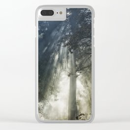 Smoke and Sun Filtered Through a Fir Tree Clear iPhone Case