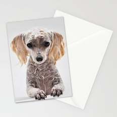 Bath Time for Rylie  (poodle) Stationery Cards