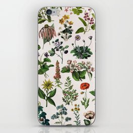 vintage botanical print iPhone Skin
