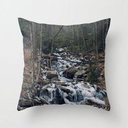 Frozen Stream From Mountain High Throw Pillow