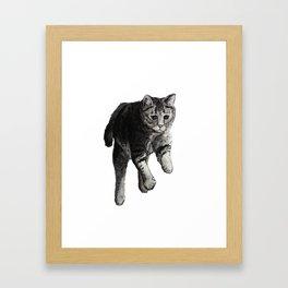 Jumping Cat Framed Art Print