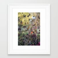 sparkles Framed Art Prints featuring Sparkles by Céline Campillo