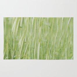 Rye plantation Rug
