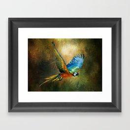 A Flash of Macaw Framed Art Print