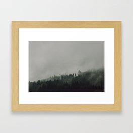 Trees & Fog Framed Art Print