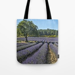 Lavender fields, Provence, France Tote Bag