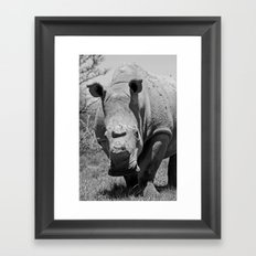 Hornless Framed Art Print
