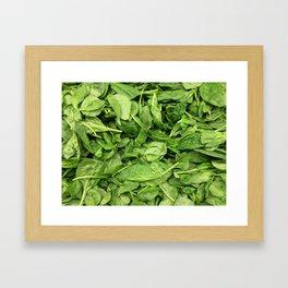 Spinach Framed Art Print