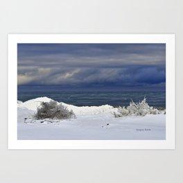 Winter Beach Shrubs Art Print