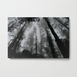 The Dark Forest (Black and White) Metal Print