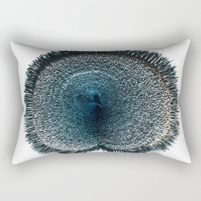 bay 3d art Rectangular Pillow