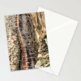 If I Could Read Tree Stationery Cards