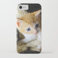 kitten iPhone & iPod Cases featuring Kitten  by Christine baessler