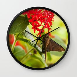 Blue Butterfly Photography Print Wall Clock