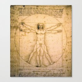 Vitruvian Man by Leonardo da Vinci Canvas Print