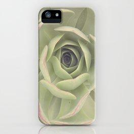 Iceplant  iPhone Case