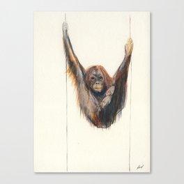 Watercolour Orang Utan  Canvas Print
